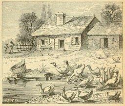 La mare et les oies de Lorraine. Source : http://data.abuledu.org/URI/524d5605-la-mare-et-les-oies-de-lorraine
