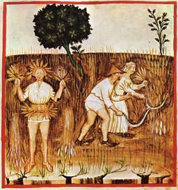La moisson au Moyen Age. Source : http://data.abuledu.org/URI/50c90032-la-moisson-au-moyen-age