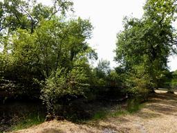 La motte du Petit-Bordeaux à Cestas. Source : http://data.abuledu.org/URI/505c7446-la-motte-du-petit-bordeaux-a-cestas