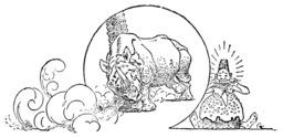 La peau du rhinocéros. Source : http://data.abuledu.org/URI/5084508f-la-peau-du-rhinoceros