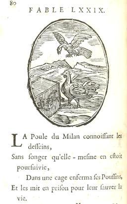 La poule et ses poussins. Source : http://data.abuledu.org/URI/5916b967-la-poule-et-ses-poussins