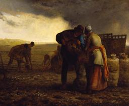 La récolte de pommes de terre. Source : http://data.abuledu.org/URI/520023e4-la-recolte-de-pommes-de-terre