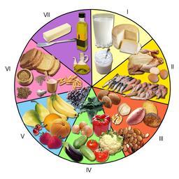 La roue des aliments. Source : http://data.abuledu.org/URI/5446d942-la-roue-des-aliments