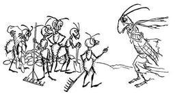 La sauterelle et les fourmis. Source : http://data.abuledu.org/URI/517d52e9-la-sauterelle-et-les-fourmis