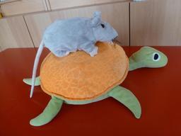 La souris et la tortue. Source : http://data.abuledu.org/URI/53ffd342-la-souris-et-la-tortue