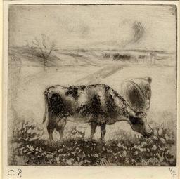 La vache. Source : http://data.abuledu.org/URI/516dbce1-la-vache