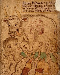 La vache sacrée islandaise. Source : http://data.abuledu.org/URI/51993754-la-vache-sacree-islandaise
