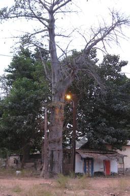 Lampadaire électrique à Kounkané. Source : http://data.abuledu.org/URI/54935b27-lampadaire-electrique-a-kounkane
