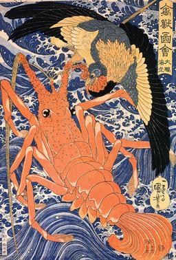 Langouste et oiseau japonais. Source : http://data.abuledu.org/URI/517fdd90-langouste-et-oiseau-japonais