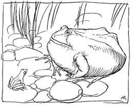 Le boeuf et la grenouille. Source : http://data.abuledu.org/URI/517d456f-le-boeuf-et-la-grenouille