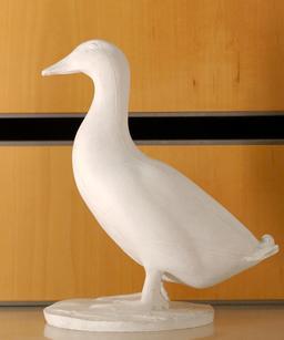 Le canard blanc. Source : http://data.abuledu.org/URI/52b20228-le-canard-blanc