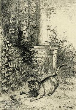 Le chat et la couleuvre. Source : http://data.abuledu.org/URI/53b9123d-le-chat-et-la-couleuvre