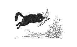 Le chat et sa proie. Source : http://data.abuledu.org/URI/51a229da-le-chat-et-sa-proie