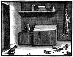 Le chat et un vieux rat. Source : http://data.abuledu.org/URI/510bc1bb-le-chat-et-un-vieux-rat