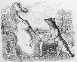Le cheval et le loup. Source : http://data.abuledu.org/URI/519ce376-le-cheval-et-le-loup
