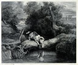 Le chien et son ombre. Source : http://data.abuledu.org/URI/58546f24-le-chien-et-son-ombre