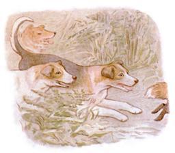 Le Conte de Sophie Canétang 24. Source : http://data.abuledu.org/URI/52cd1459-le-conte-de-sophie-canetang-24