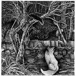 Le corbeau et le renard. Source : http://data.abuledu.org/URI/521b074b-le-corbeau-et-le-renard