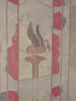 Le cygne et le serpent. Source : http://data.abuledu.org/URI/54cbc78a-le-cygne-et-le-serpent