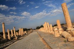 Le Decumanus Maximus à Umm Qais en Jordanie. Source : http://data.abuledu.org/URI/547f6600-le-decumanus-maximus-a-umm-qais-en-jordanie