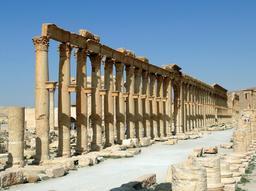 Le decumanus maximus de Palmyre en Syrie. Source : http://data.abuledu.org/URI/54b56842-le-decumanus-maximus-de-palmyre-en-syrie
