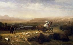 Le dernier bison. Source : http://data.abuledu.org/URI/53562bba-le-dernier-bison