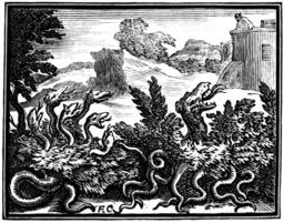 Le dragon à plusieurs têtes et le dragon à plusieurs queues. Source : http://data.abuledu.org/URI/510be266-le-dragon-a-plusieurs-tetes-et-le-dragon-a-plusieurs-queues