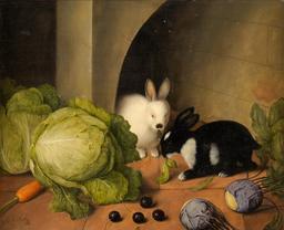 Le festin des deux lapins. Source : http://data.abuledu.org/URI/515a71cb-le-festin-des-deux-lapins