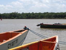 Le fleuve Kourou en Guyane. Source : http://data.abuledu.org/URI/52779e4d-le-fleuve-kourou-en-guyane