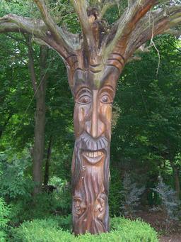 Le gnome-arbre. Source : http://data.abuledu.org/URI/560f4b78-le-gnome-arbre