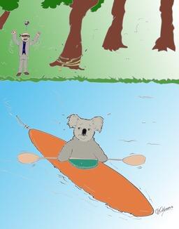 Le koala en kayak. Source : http://data.abuledu.org/URI/53787921-le-koala-en-kayak