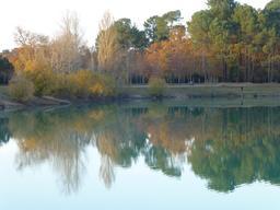Le lac vert de Canéjan en automne. Source : http://data.abuledu.org/URI/5665498d-le-lac-vert-de-canejan-en-automne