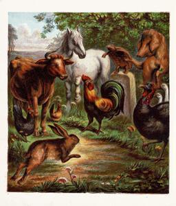 Le lièvre et la tortue 04. Source : http://data.abuledu.org/URI/51963691-le-lievre-et-la-tortue-04