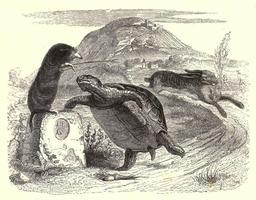 Le lièvre et la tortue. Source : http://data.abuledu.org/URI/51963de3-le-lievre-et-la-tortue