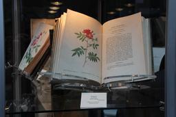 Le livre des roses de Redouté. Source : http://data.abuledu.org/URI/52482636-le-livre-des-roses-de-redoute