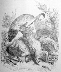 Le loup et la cigogne. Source : http://data.abuledu.org/URI/51f995a4-le-loup-et-la-cigogne