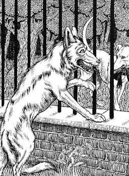 Le Loup et le Chien maigre. Source : http://data.abuledu.org/URI/519c8a06-le-loup-et-le-chien-maigre