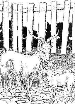 Le Loup, la Chèvre, et le Chevreau. Source : http://data.abuledu.org/URI/519bfa2e-le-loup-la-chevre-et-le-chevreau