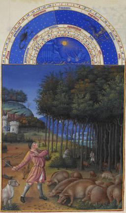 Le mois de novembre des Très Riches Heures du Duc de Berry. Source : http://data.abuledu.org/URI/531c5adc-le-mois-de-novembre-des-tres-riches-heures-du-duc-de-berry