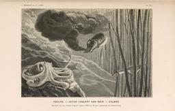 Le monde de la mer en 1866. Source : http://data.abuledu.org/URI/5943c816-le-monde-de-la-mer-en-1866