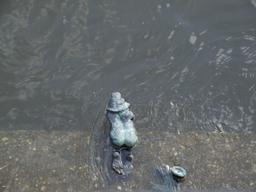 Le nain nageur. Source : http://data.abuledu.org/URI/51e863df-le-nain-nageur