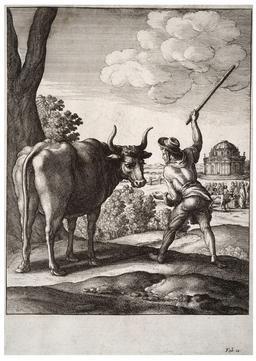 Le paysan et le boeuf. Source : http://data.abuledu.org/URI/5193d839-le-paysan-et-le-boeuf