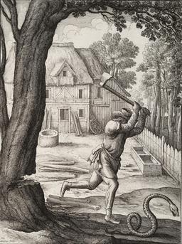 Le paysan et le serpent. Source : http://data.abuledu.org/URI/5194ac98-le-paysan-et-le-serpent