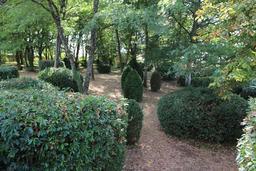 Le petit bois de Malle. Source : http://data.abuledu.org/URI/50463f57-le-petit-bois-de-malle
