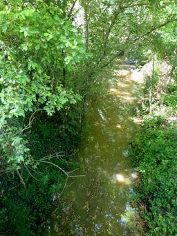 Le Peugue dans le parc du Bourgailh. Source : http://data.abuledu.org/URI/5826c49a-le-peugue-dans-le-parc-du-bourgailh