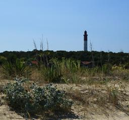 Le phare du Cap-Ferret. Source : http://data.abuledu.org/URI/55a79fcb-le-phare-du-cap-ferret