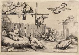 Le pigeonnier. Source : http://data.abuledu.org/URI/54b2ef4c-le-pigeonnier
