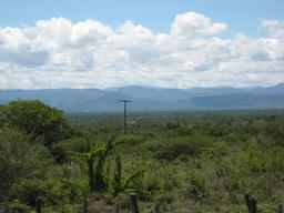Le plateau du Chapada Diamantina. Source : http://data.abuledu.org/URI/56c3883b-le-plateau-du-chapada-diamantina