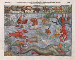 Le port des langoustes. Source : http://data.abuledu.org/URI/517fdf7e-le-port-des-langoustes