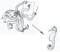 Le poulpe et l'hippocampe. Source : http://data.abuledu.org/URI/55397dfb-le-poulpe-et-l-hippocampe